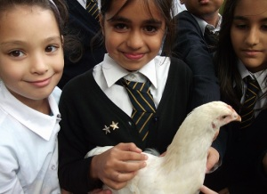 Girls with hen - cropped