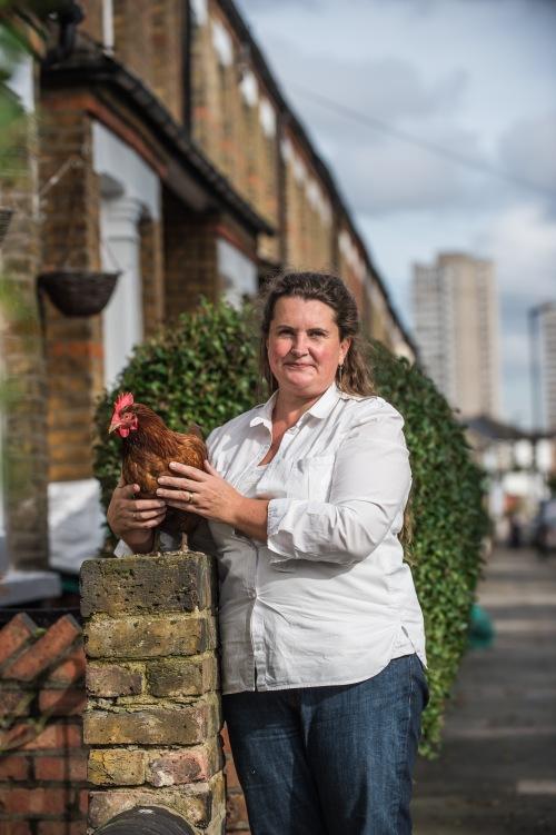 Hen in Street